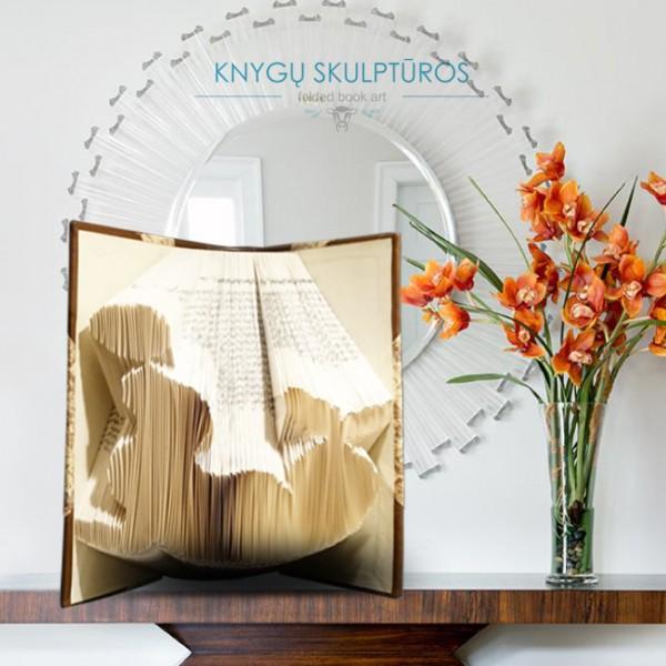 ruonis-knygu-skulptura